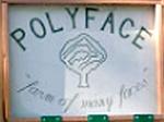 Polyface