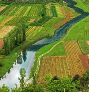 iStock-Farmland