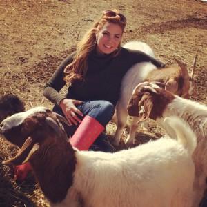 Boneta-goats2-photo
